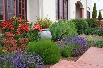 Gartenumänderungen